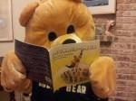 Manner-Man is Bully Bear's Superhero